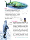 Энциклопедия для любознательных от А до Я — фото, картинка — 8