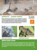 Гигантская детская 4D энциклопедия — фото, картинка — 14