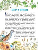 Рассказы о природе — фото, картинка — 6