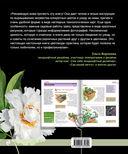 Садовые цветы. Подробное иллюстрированное руководство — фото, картинка — 16