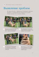 Идеальная собака не выгуливает хозяина — фото, картинка — 10