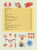 Детский иллюстрированный атлас анатомии человека — фото, картинка — 2