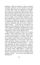Приключения Гекльберри Финна — фото, картинка — 8