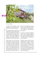 Абхазия пешком. Самые интересные прогулки по Абхазии — фото, картинка — 8