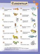 Удивительные животные со всего света! Более 100 обитателей Земли в разных стилях — фото, картинка — 1