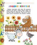 Животные для малышей — фото, картинка — 2