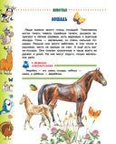 Животные для малышей — фото, картинка — 6