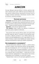 Справочник начинающего цветовода — фото, картинка — 12