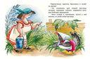 Петушок и бобовое зёрнышко — фото, картинка — 2