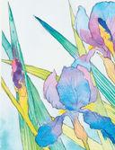 Нарисуй цветы в стиле модерн акварелью по схемам — фото, картинка — 4