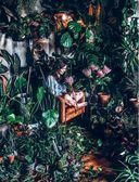 Wild at home. Как превратить свой дом в зеленый рай — фото, картинка — 14