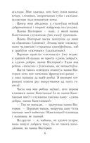 Салавей. Сярэбраная табакерка — фото, картинка — 5