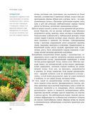 Красивые сады. Секреты ландшафтных дизайнеров — фото, картинка — 14
