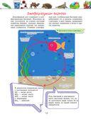 Большая энциклопедия. Животный и растительный мир — фото, картинка — 14