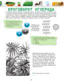 Большая энциклопедия. Животный и растительный мир — фото, картинка — 15