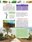 Большая энциклопедия. Животный и растительный мир — фото, картинка — 9
