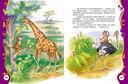 Рассказы и сказки о животных — фото, картинка — 2