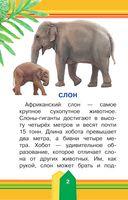 Животные в зоопарке — фото, картинка — 2