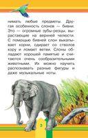 Животные в зоопарке — фото, картинка — 3