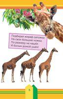 Животные в зоопарке — фото, картинка — 5