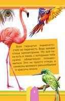 Удивительные птицы — фото, картинка — 2