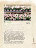 Цветы для любого цветника за один сезон. Большая иллюстрированная энциклопедия — фото, картинка — 15