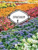 Цветы для любого цветника за один сезон. Большая иллюстрированная энциклопедия — фото, картинка — 5