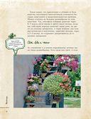 Цветы для любого цветника за один сезон. Большая иллюстрированная энциклопедия — фото, картинка — 8