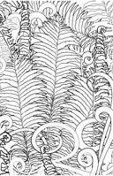 Загадочный лес. Мини-раскраска-антистресс для творчества и вдохновения — фото, картинка — 12