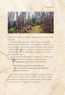 Норвежский лес: скандинавский путь к силе и свободе — фото, картинка — 15