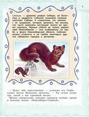 Новосибирск для детей — фото, картинка — 5