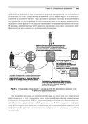 Безопасный DevOps. Эффективная эксплуатация систем — фото, картинка — 12