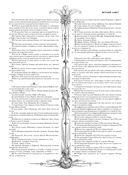 Библия. Книги Священного Писания Ветхого и Нового Завета с иллюстрациями Гюстава Доре — фото, картинка — 14
