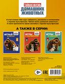 Тайная жизнь домашних животных. Играй и раскрашивай (оранжевая) — фото, картинка — 2