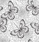 Арт-медитации от усталости и стресса. Полет бабочки — фото, картинка — 4