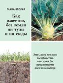 Большая энциклопедия садовода и огородника от А до Я — фото, картинка — 13