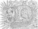 Волшебный зоопарк. Прятки, загадки и раскраски — фото, картинка — 7