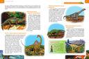 Лучшая детская энциклопедия обо всем на свете — фото, картинка — 4
