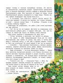 Снумрики. Пуговичное королевство — фото, картинка — 11