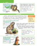 Большой определитель зверей, амфибий, рептилий, птиц, насекомых и растений России — фото, картинка — 12