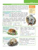 Большой определитель зверей, амфибий, рептилий, птиц, насекомых и растений России — фото, картинка — 15