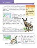 Большой определитель зверей, амфибий, рептилий, птиц, насекомых и растений России — фото, картинка — 10