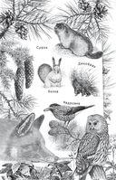 Рассказы о животных — фото, картинка — 2