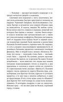Сыскарь чародейского приказа — фото, картинка — 11