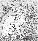 Раскраска-антистресс. Загадочные кошки — фото, картинка — 3