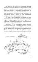 Садовая смекалка — фото, картинка — 9