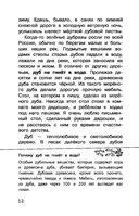Русский лес — фото, картинка — 12