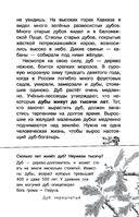 Русский лес — фото, картинка — 13