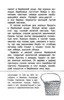 Русский лес — фото, картинка — 15
