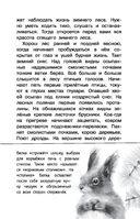Русский лес — фото, картинка — 5